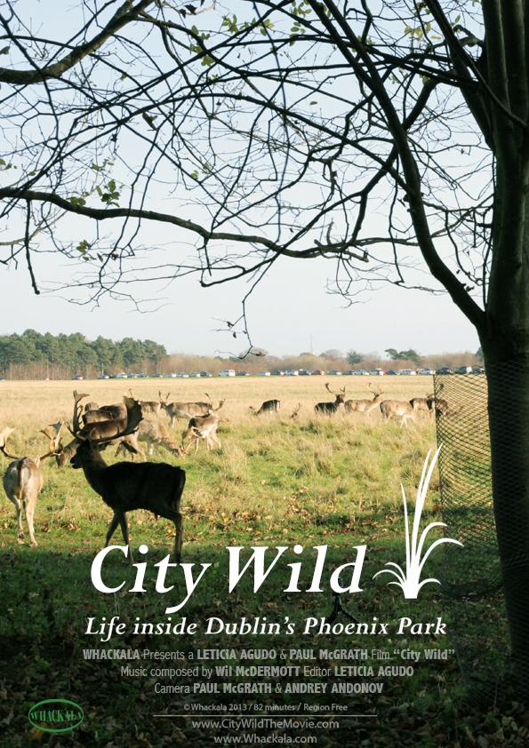 City Wild Documentary